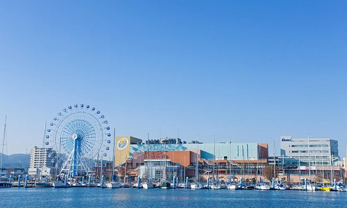 静岡のシーサイドリゾートを目指しています!