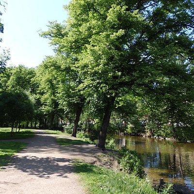 Берег реки Смоленки со стороны Камского сада