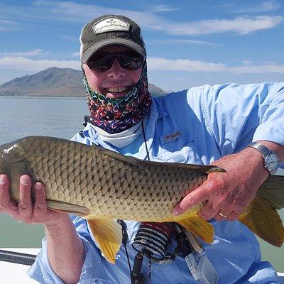 Average fish from Utah Lake