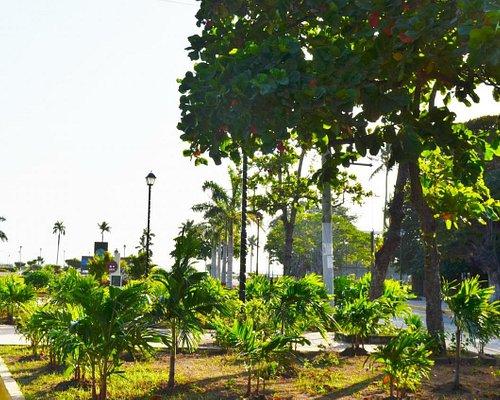 緑溢れる公園