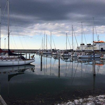 Endelave Havn med færgen i baggrunden
