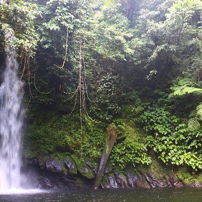 Malabsay Falls at 9am