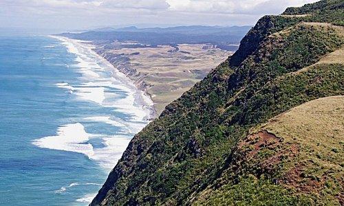 Breathtaking Kauri Coast coastal walks