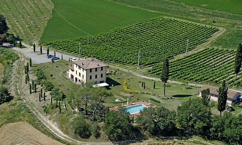 Una vista dall'alto di Villa Fonte Regina con l'uliveto, la vigna e la piscina.