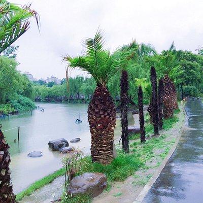 Rainy day in daning