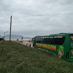 Paddywagon Tours at Inch Beach.
