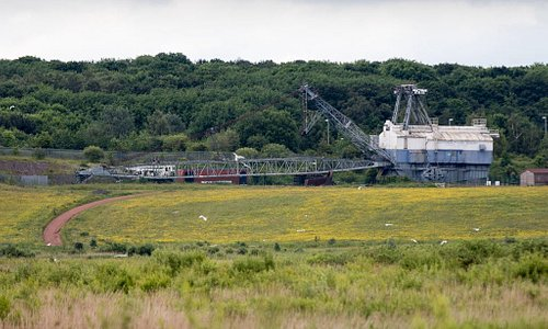 Looking North over the marshes with walking dragline in the distance