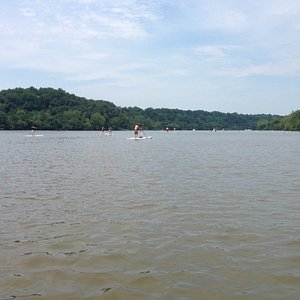The potomac River just down river from Fletchers Boathouse