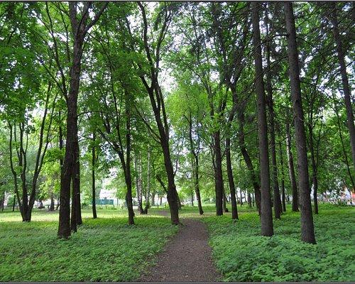 Парк им. 50-летия Советской власти