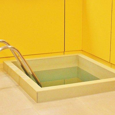 Sauna pool