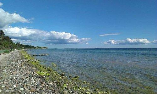 Stranden mellem Bisserup og Klinteby