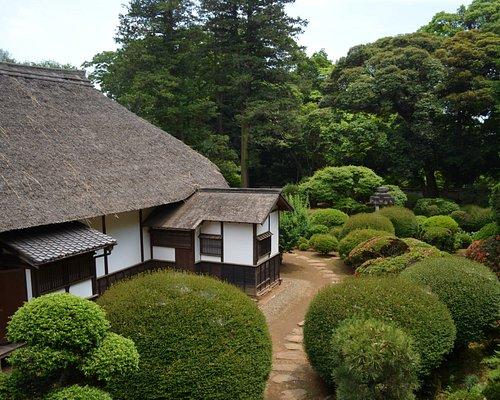坂野家住宅 2回から眺めた庭