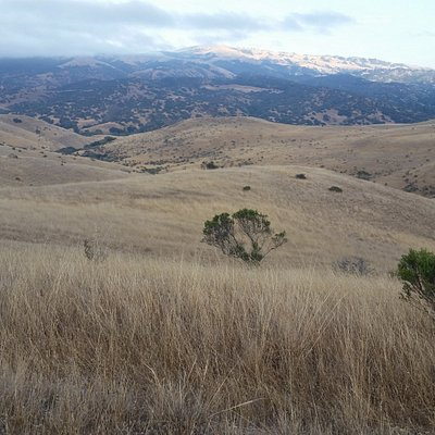 Quite of grassy hills of Fort Ord