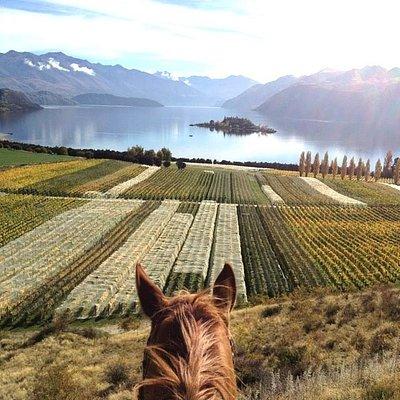 Exquisite Views!