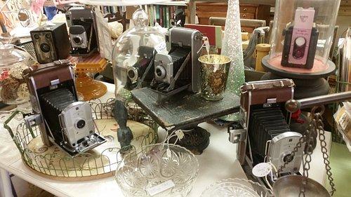 Even more antique cameras