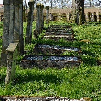Mennonite Cemetery in Stogi