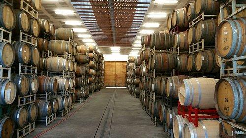 Marzocco barrel room