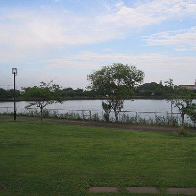 ふれあい坂田池公園 長閑な雰囲気