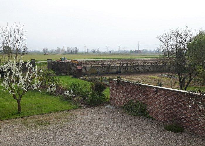 campi di riso visto dal giardino del'agriturismo soncino pavese