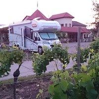 Wohnmobil Stellplatz beim Weingut Schäfer, Mussbach