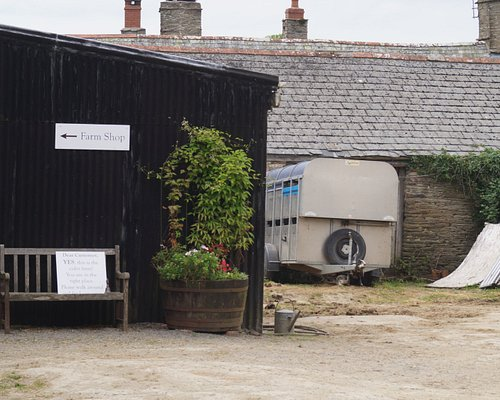 Indicknowle Farmyard with Shop to left