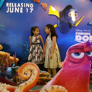 The display of Finding Dory