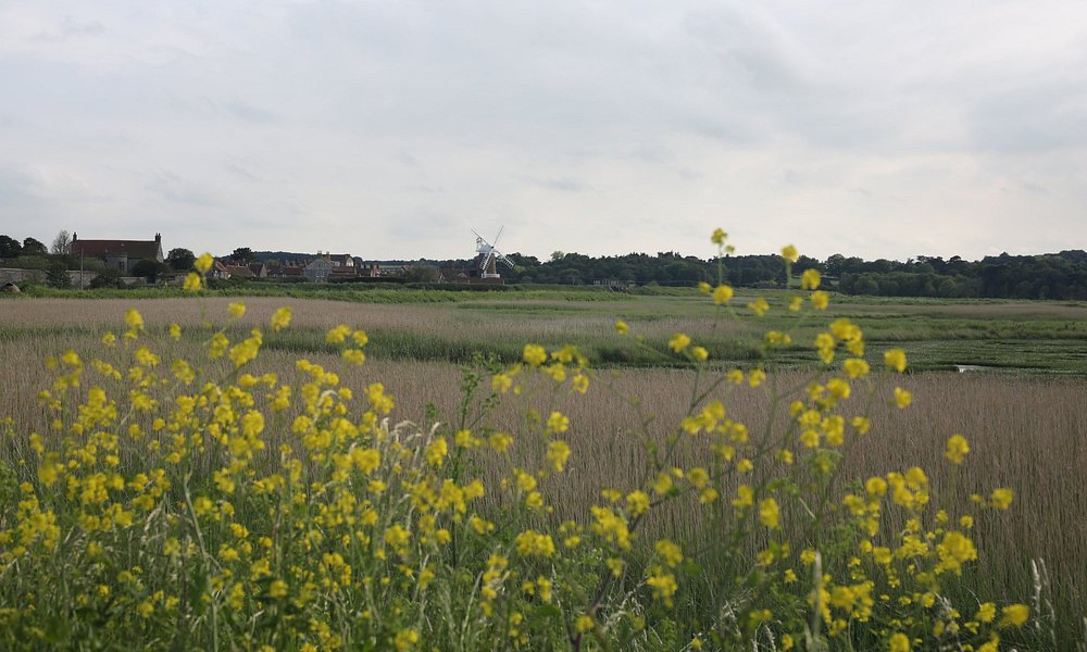View across the Marshes.