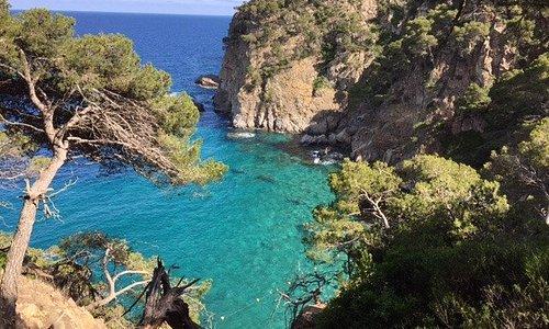 Tamariu beaches