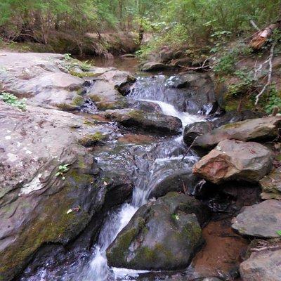 Creek along the trails
