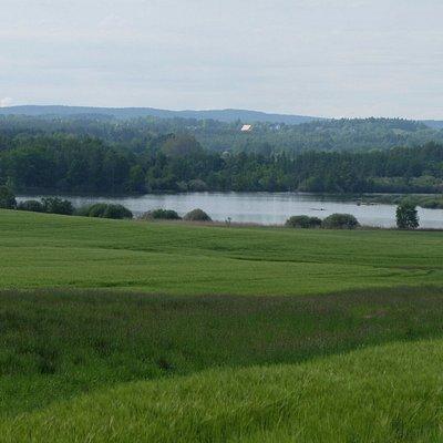 Blick auf den Amerika-Teich