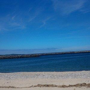 Sandy Neck Beach 1