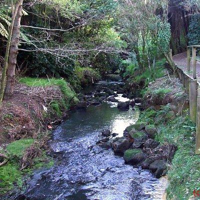 Oakley Creek walk