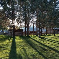 Grounds & Corral - the light is beautiful here in Tumalo