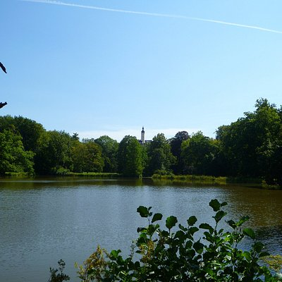 You can even see the tower of Oberes Schloss from Greizer Park