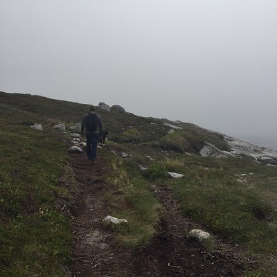 Hiking the High Head Trail on a foggy spring day.