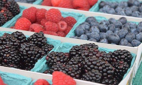 Fresh berries from Raphael Cardenas Farms