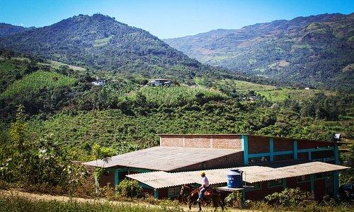 Hacia Ayavaca. Camino de trocha en pintoresca foto. La costumbre subir la cuesta a lomo de burro