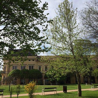 A relaxing park next to St., Klara church