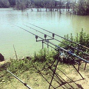 Momenti di pesca sportiva al lago