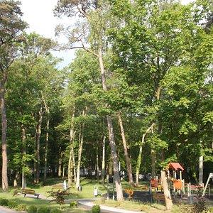 Der schön angelegte Park, mit Kinder-Spielplatz.