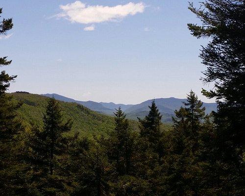 Sugar Hill Scenic Vista