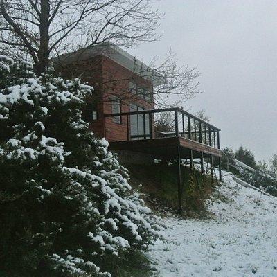 Cellar Door in Snow
