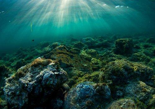 L'isola che ti concede il lusso di rallentare il ritmo, il diving che ti offre una vacanza liber
