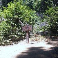 Half way of the loop at Ewoldsen trail