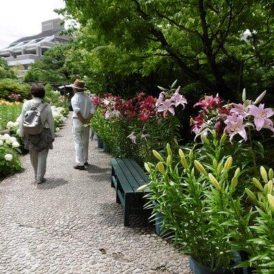 花庭園内部