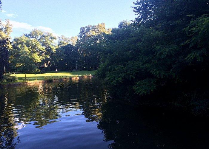 Газон, по которому можно ходить, утки, которые не боятся людей, незнакомые деревья, фонтан посер