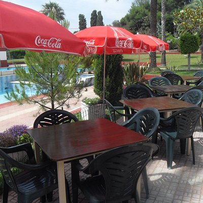 Bar and terrace provides fresh food  and cooling drinks.