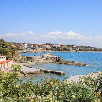 Vista dei bagni e della costa dalla pineta