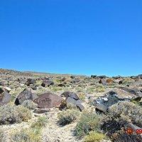 Petroglyph Viewing Area