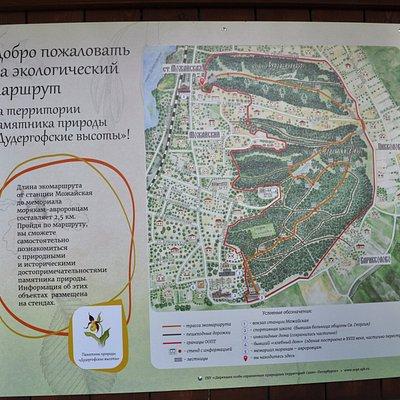 План-схема Дудергофские высоты